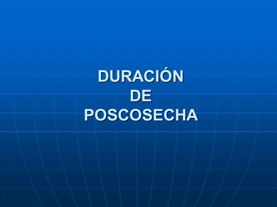 DURACIÓN DE POSCOSECHA