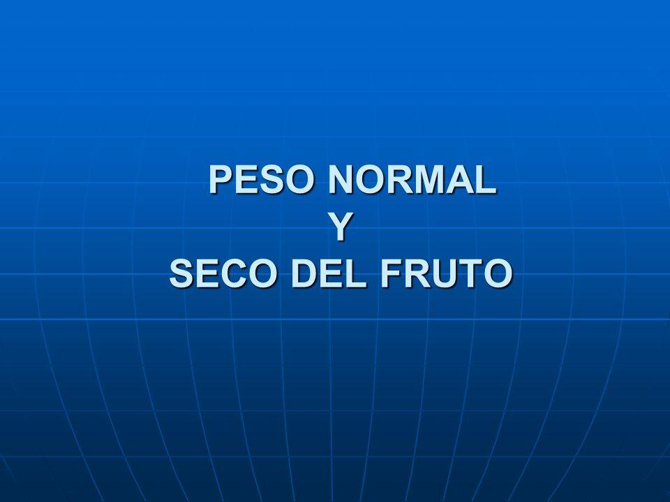 PESO NORMAL Y SECO DEL FRUTO PESO NORMAL Y SECO DEL FRUTO