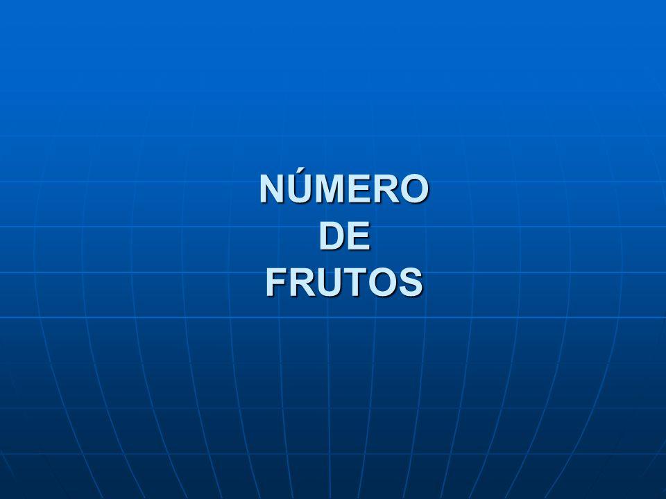 NÚMERO DE FRUTOS