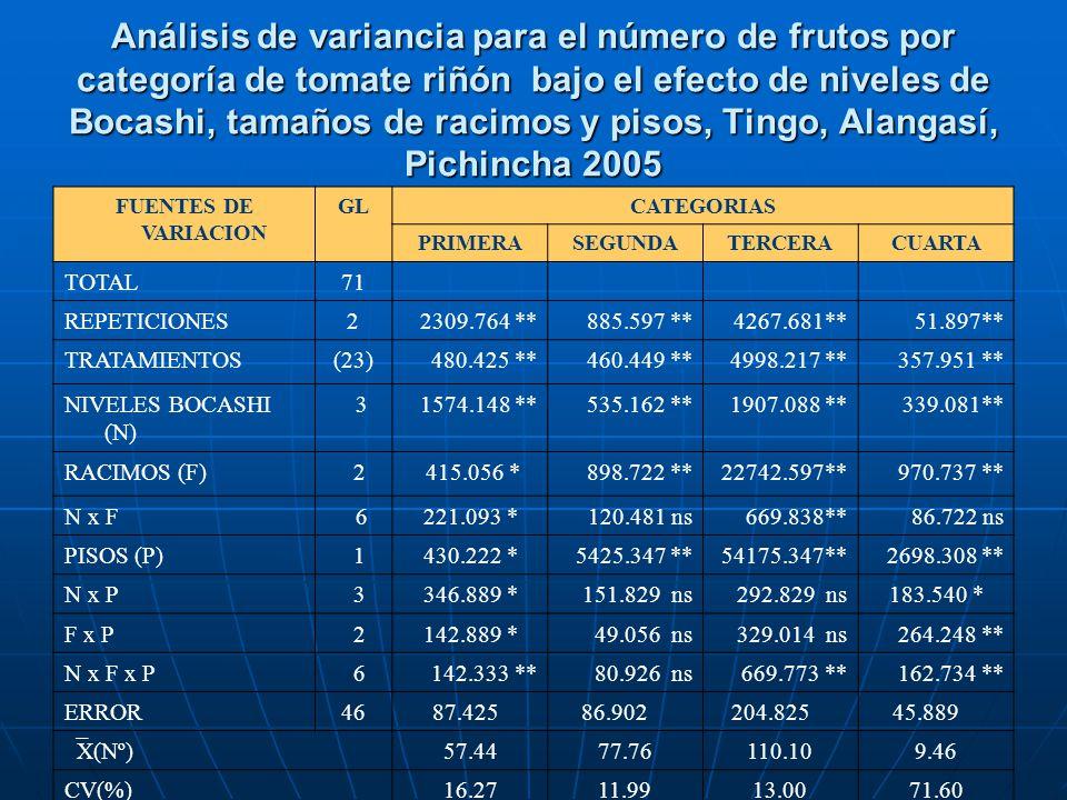 Análisis de variancia para el número de frutos por categoría de tomate riñón bajo el efecto de niveles de Bocashi, tamaños de racimos y pisos, Tingo,