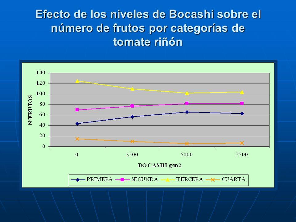 Efecto de los niveles de Bocashi sobre el número de frutos por categorías de tomate riñón
