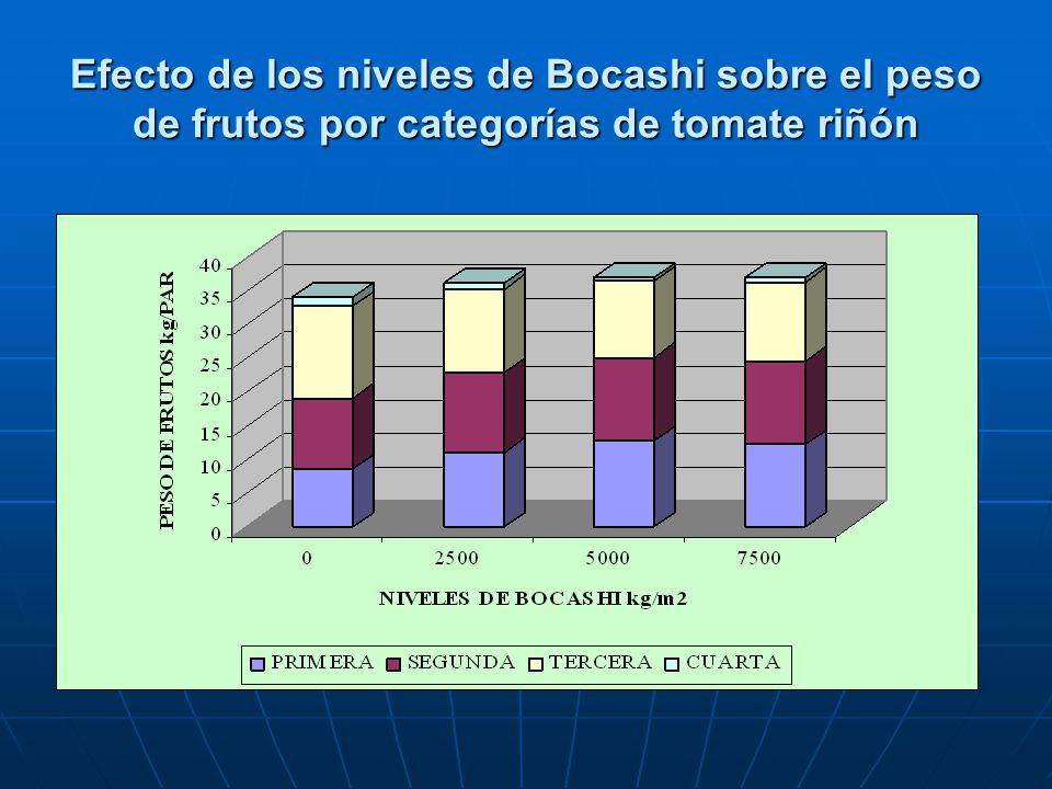 Efecto de los niveles de Bocashi sobre el peso de frutos por categorías de tomate riñón