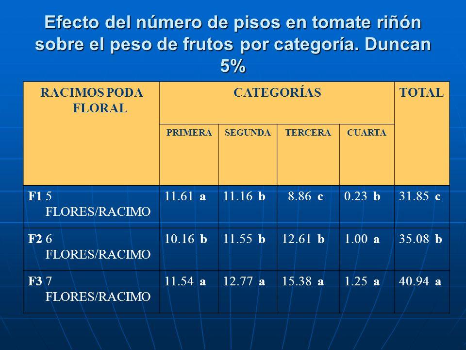Efecto del número de pisos en tomate riñón sobre el peso de frutos por categoría. Duncan 5% RACIMOS PODA FLORAL CATEGORÍASTOTAL PRIMERASEGUNDATERCERAC