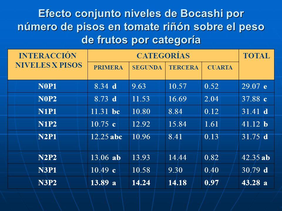Efecto conjunto niveles de Bocashi por número de pisos en tomate riñón sobre el peso de frutos por categoría INTERACCIÓN NIVELES X PISOS CATEGORÍASTOT