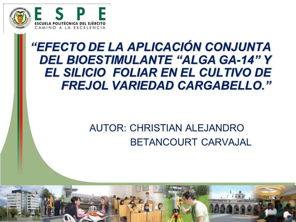 Introducción Para promover la seguridad alimentaria y económica del productor; potenciando el consumo del frejol como la fuente de proteína y energía en la dieta de todos los sectores sociales del Ecuador; bajando el uso de agroquímicos y mejorando la calidad del producto.