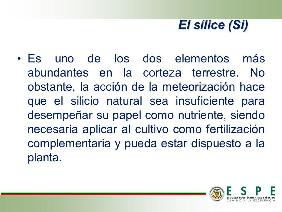 Es uno de los dos elementos más abundantes en la corteza terrestre. No obstante, la acción de la meteorización hace que el silicio natural sea insufic
