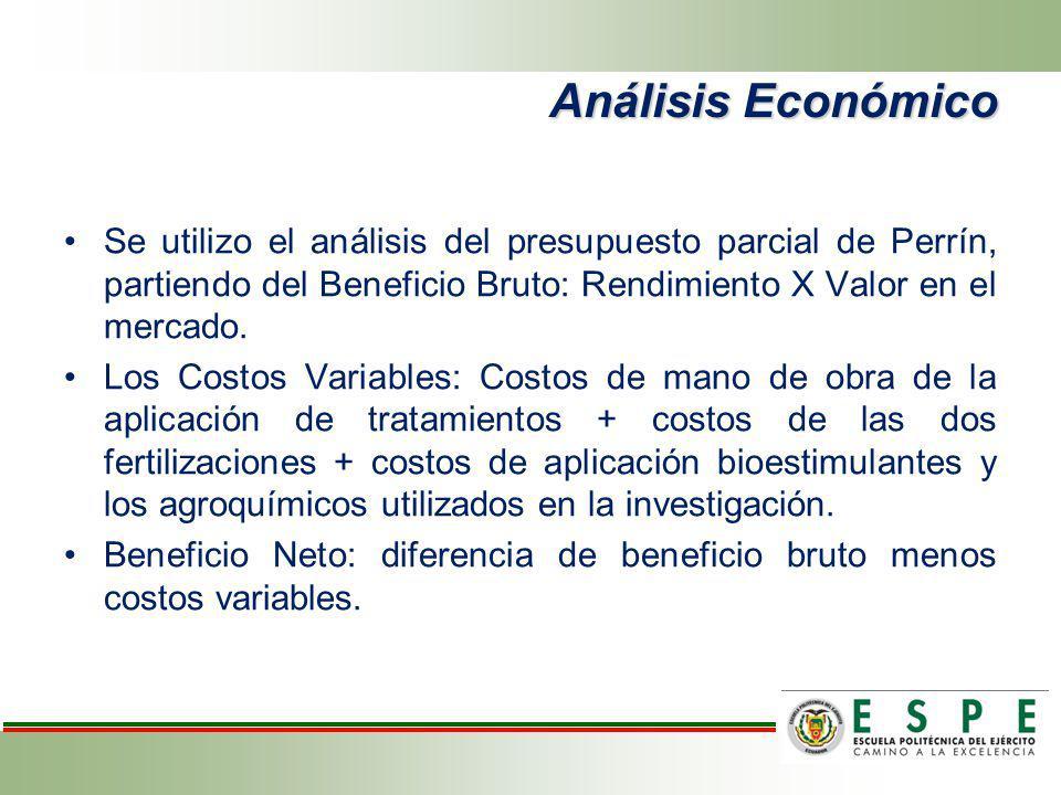 Análisis Económico Se utilizo el análisis del presupuesto parcial de Perrín, partiendo del Beneficio Bruto: Rendimiento X Valor en el mercado. Los Cos