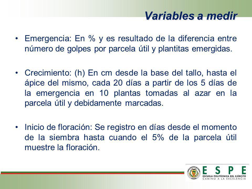 Variables a medir Emergencia: En % y es resultado de la diferencia entre número de golpes por parcela útil y plantitas emergidas. Crecimiento: (h) En