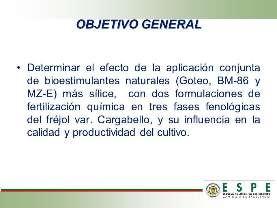 Determinar el efecto de la aplicación conjunta de bioestimulantes naturales (Goteo, BM-86 y MZ-E) más sílice, con dos formulaciones de fertilización q