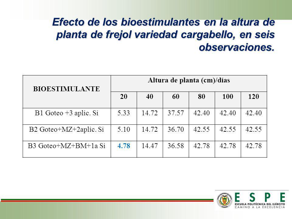 Efecto de los bioestimulantes en la altura de planta de frejol variedad cargabello, en seis observaciones. BIOESTIMULANTE Altura de planta (cm)/días 2