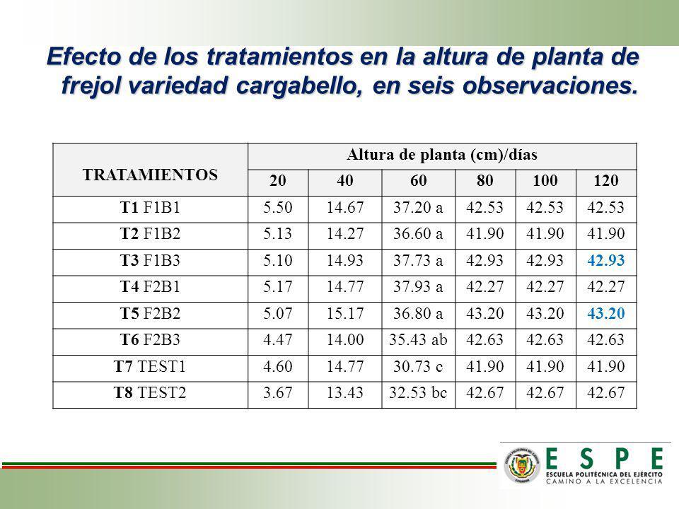 Efecto de los tratamientos en la altura de planta de frejol variedad cargabello, en seis observaciones. TRATAMIENTOS Altura de planta (cm)/días 204060