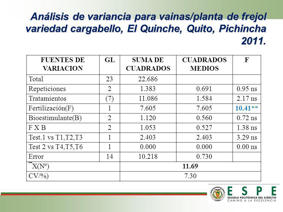 Análisis de variancia para vainas/planta de frejol variedad cargabello, El Quinche, Quito, Pichincha 2011. FUENTES DE VARIACION GLSUMA DE CUADRADOS CU