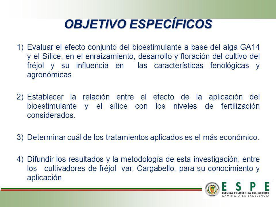 1)Evaluar el efecto conjunto del bioestimulante a base del alga GA14 y el Sílice, en el enraizamiento, desarrollo y floración del cultivo del fréjol y