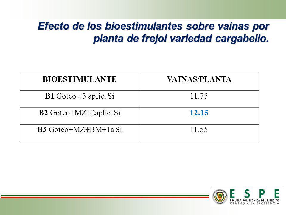 Efecto de los bioestimulantes sobre vainas por planta de frejol variedad cargabello. BIOESTIMULANTEVAINAS/PLANTA B1 Goteo +3 aplic. Si11.75 B2 Goteo+M