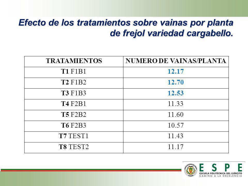 Efecto de los tratamientos sobre vainas por planta de frejol variedad cargabello. TRATAMIENTOSNUMERO DE VAINAS/PLANTA T1 F1B112.17 T2 F1B212.70 T3 F1B