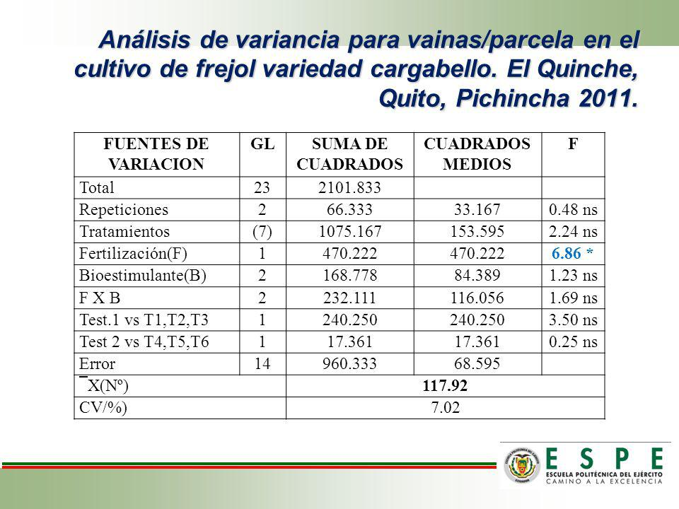 Análisis de variancia para vainas/parcela en el cultivo de frejol variedad cargabello. El Quinche, Quito, Pichincha 2011. FUENTES DE VARIACION GLSUMA