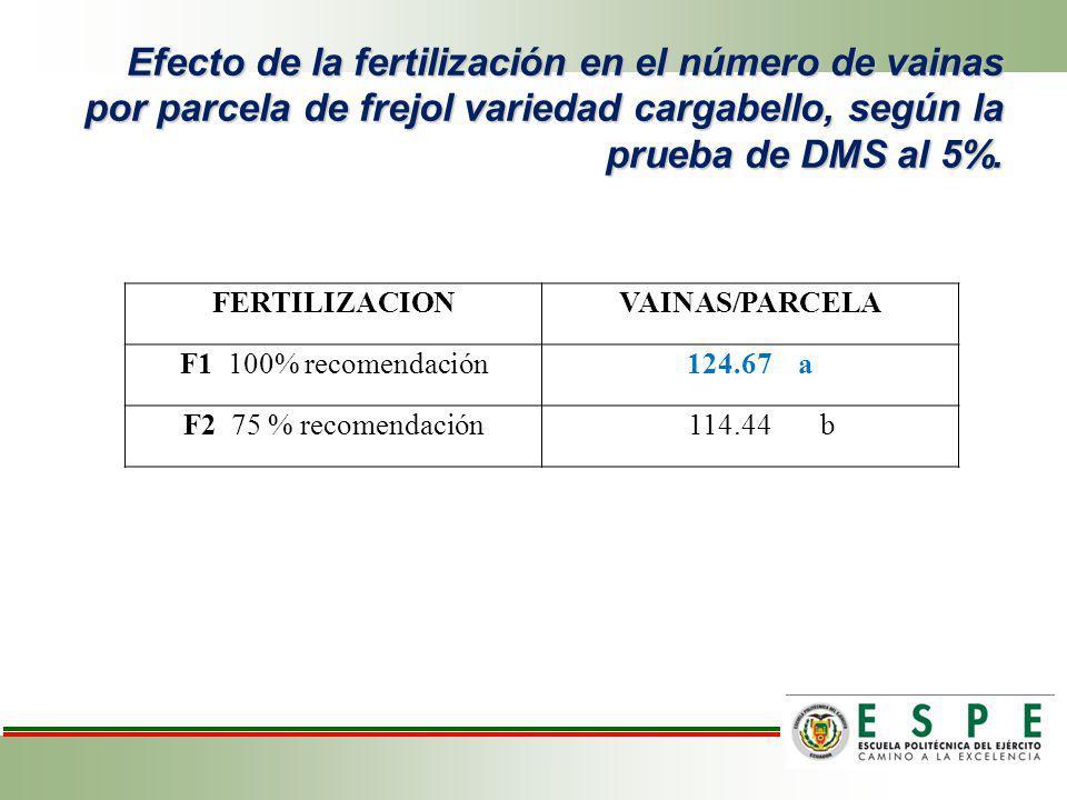 Efecto de la fertilización en el número de vainas por parcela de frejol variedad cargabello, según la prueba de DMS al 5%. FERTILIZACIONVAINAS/PARCELA