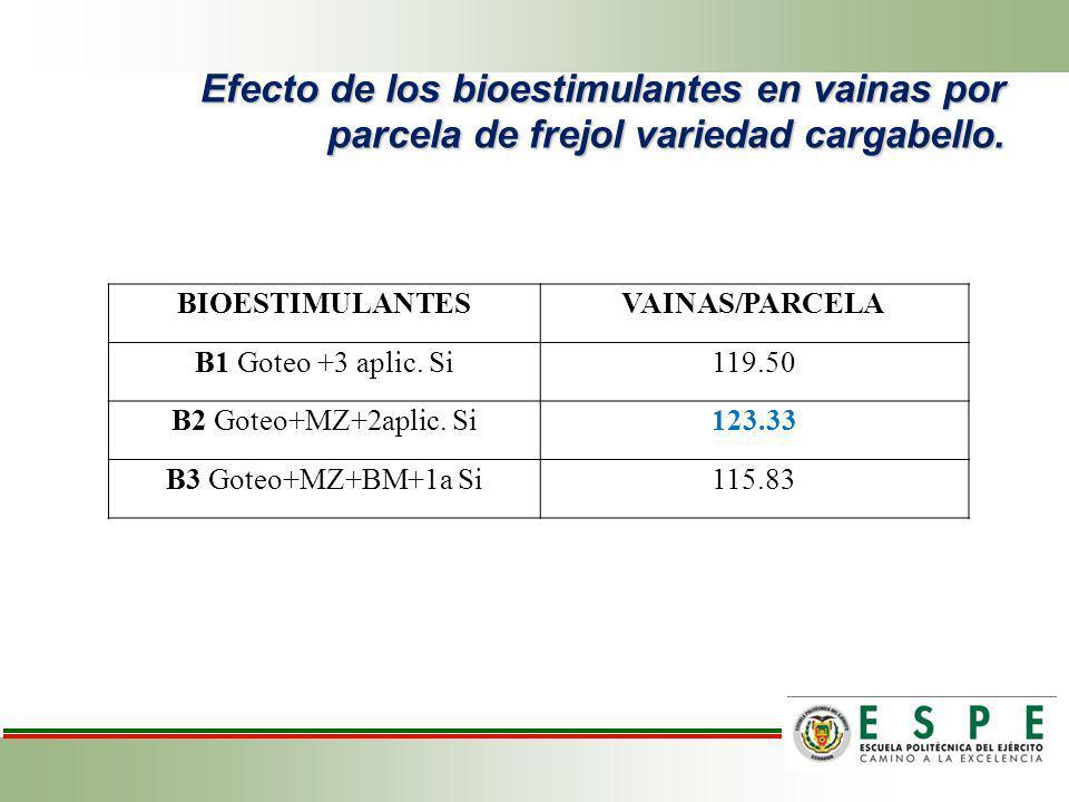 Efecto de los bioestimulantes en vainas por parcela de frejol variedad cargabello. BIOESTIMULANTESVAINAS/PARCELA B1 Goteo +3 aplic. Si119.50 B2 Goteo+