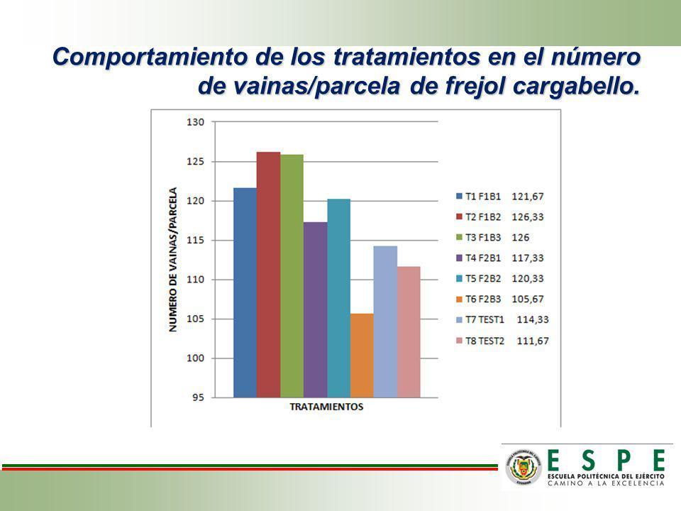 Comportamiento de los tratamientos en el número de vainas/parcela de frejol cargabello.
