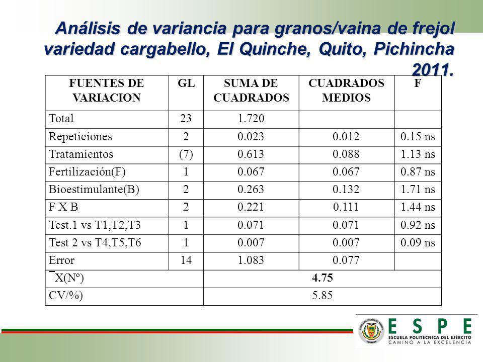 Análisis de variancia para granos/vaina de frejol variedad cargabello, El Quinche, Quito, Pichincha 2011. FUENTES DE VARIACION GLSUMA DE CUADRADOS CUA
