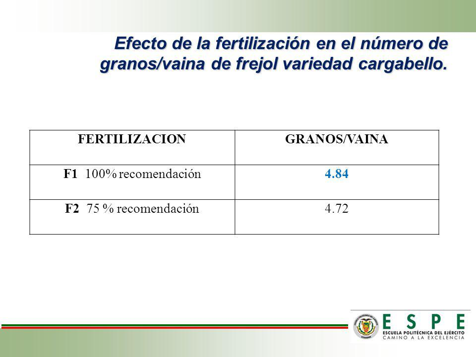 Efecto de la fertilización en el número de granos/vaina de frejol variedad cargabello. FERTILIZACIONGRANOS/VAINA F1 100% recomendación4.84 F2 75 % rec