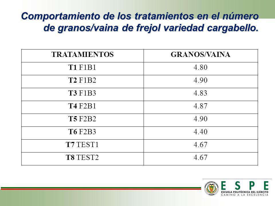 Comportamiento de los tratamientos en el número de granos/vaina de frejol variedad cargabello. TRATAMIENTOSGRANOS/VAINA T1 F1B14.80 T2 F1B24.90 T3 F1B