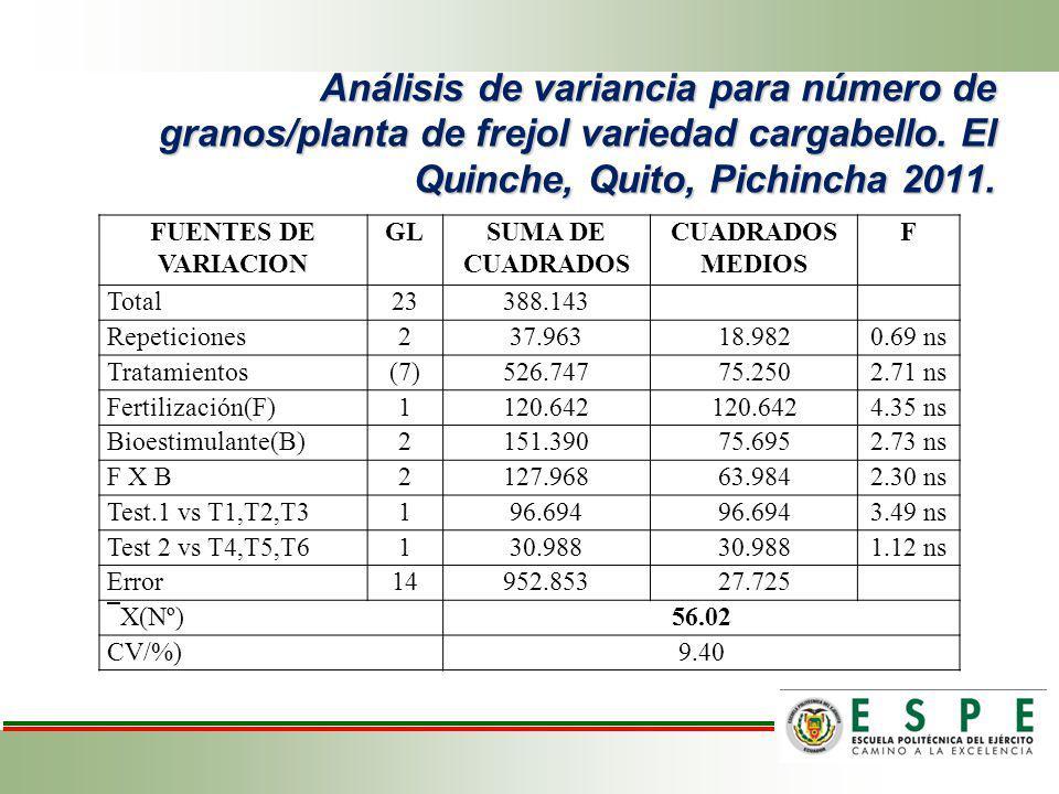 Análisis de variancia para número de granos/planta de frejol variedad cargabello. El Quinche, Quito, Pichincha 2011. FUENTES DE VARIACION GLSUMA DE CU
