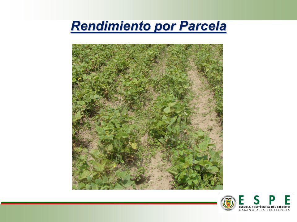 Análisis de variancia para rendimiento por parcela de frejol variedad cargabello.