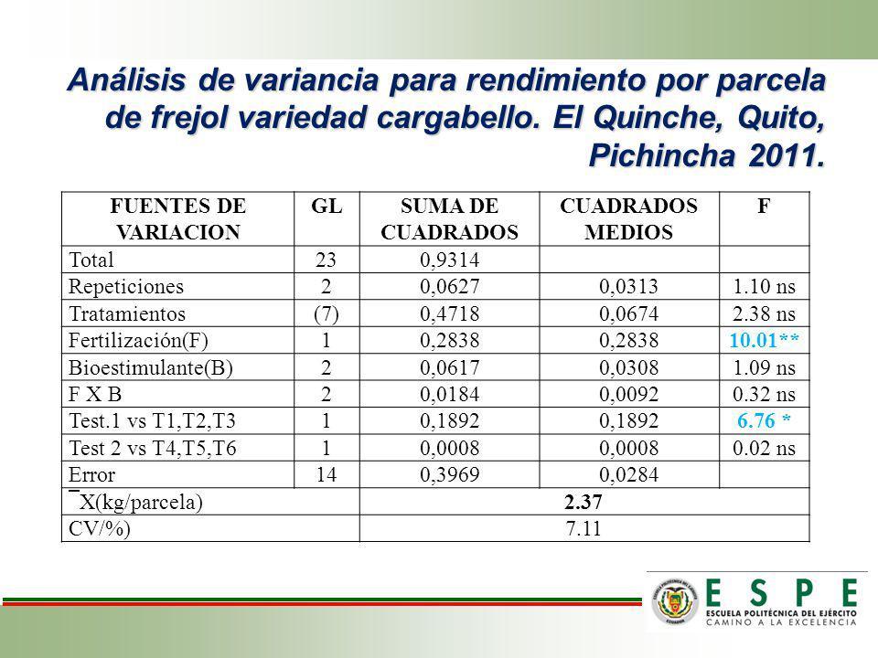 Análisis de variancia para rendimiento por parcela de frejol variedad cargabello. El Quinche, Quito, Pichincha 2011. FUENTES DE VARIACION GLSUMA DE CU
