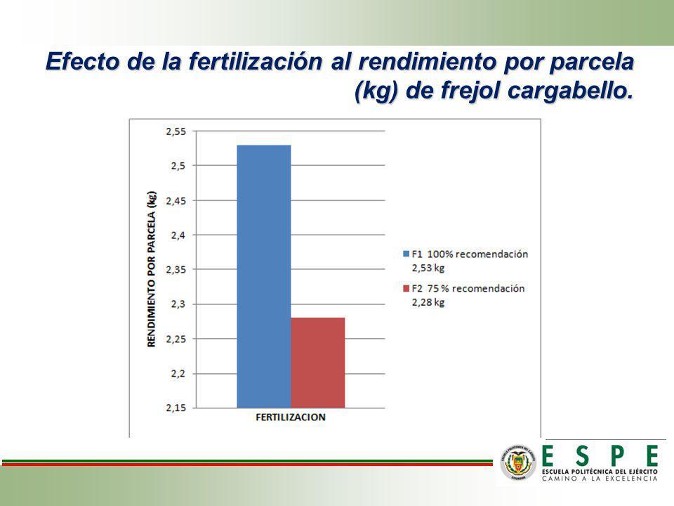 Efecto de la fertilización al rendimiento por parcela (kg) de frejol cargabello.