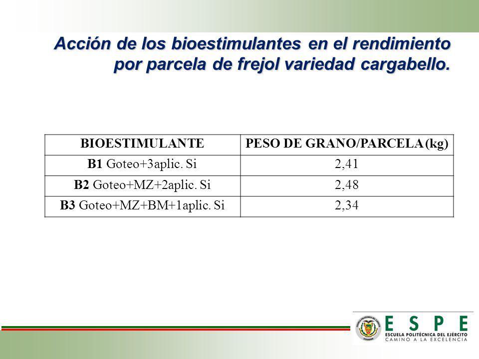 Acción de los bioestimulantes en el rendimiento por parcela de frejol variedad cargabello. BIOESTIMULANTEPESO DE GRANO/PARCELA (kg) B1 Goteo+3aplic. S