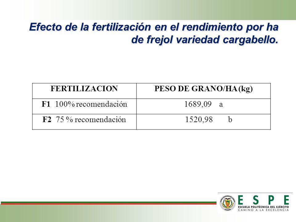 Efecto de la fertilización en el rendimiento por ha de frejol variedad cargabello. FERTILIZACIONPESO DE GRANO/HA (kg) F1 100% recomendación1689,09 a F