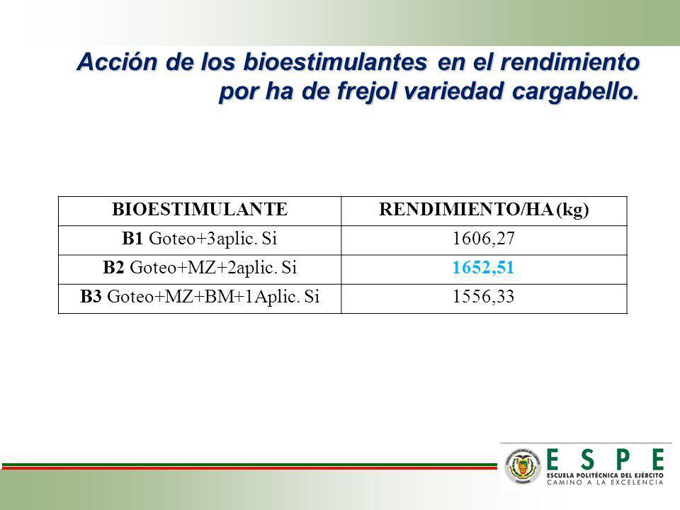 Acción de los bioestimulantes en el rendimiento por ha de frejol variedad cargabello. BIOESTIMULANTERENDIMIENTO/HA (kg) B1 Goteo+3aplic. Si1606,27 B2