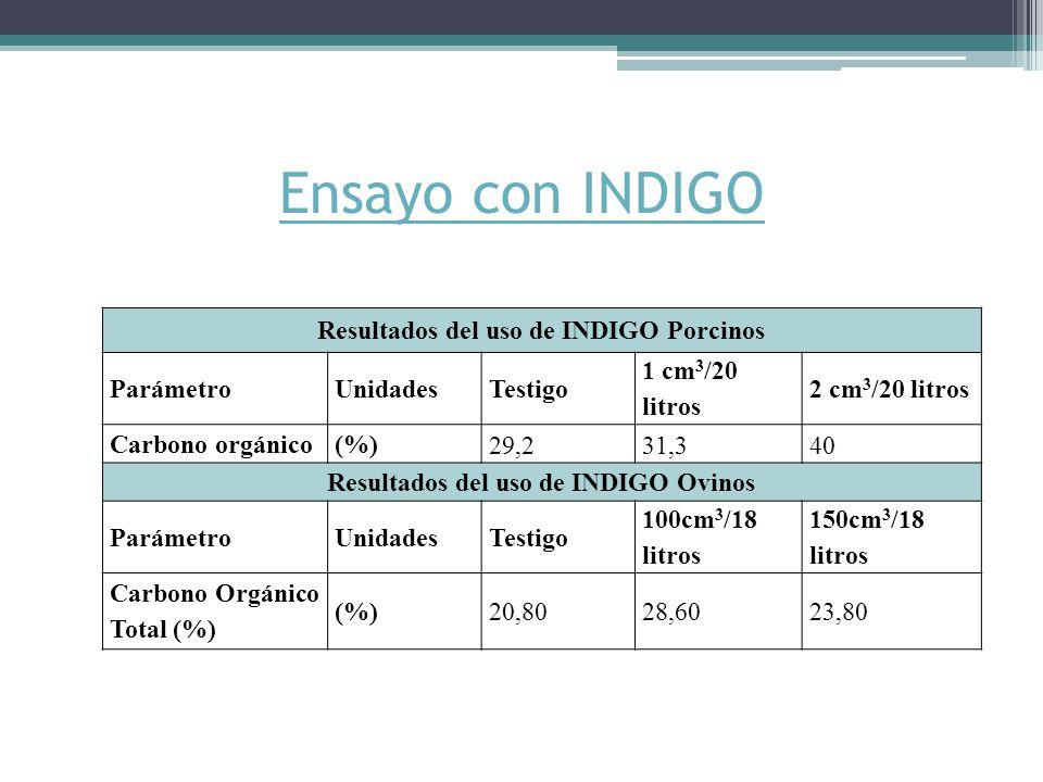 Ensayo con INDIGO Resultados del uso de INDIGO Porcinos ParámetroUnidades Testigo 1 cm 3 /20 litros 2 cm 3 /20 litros Carbono orgánico(%) 29,231,340 Resultados del uso de INDIGO Ovinos ParámetroUnidades Testigo 100cm 3 /18 litros 150cm 3 /18 litros Carbono Orgánico Total (%) (%)20,8028,6023,80