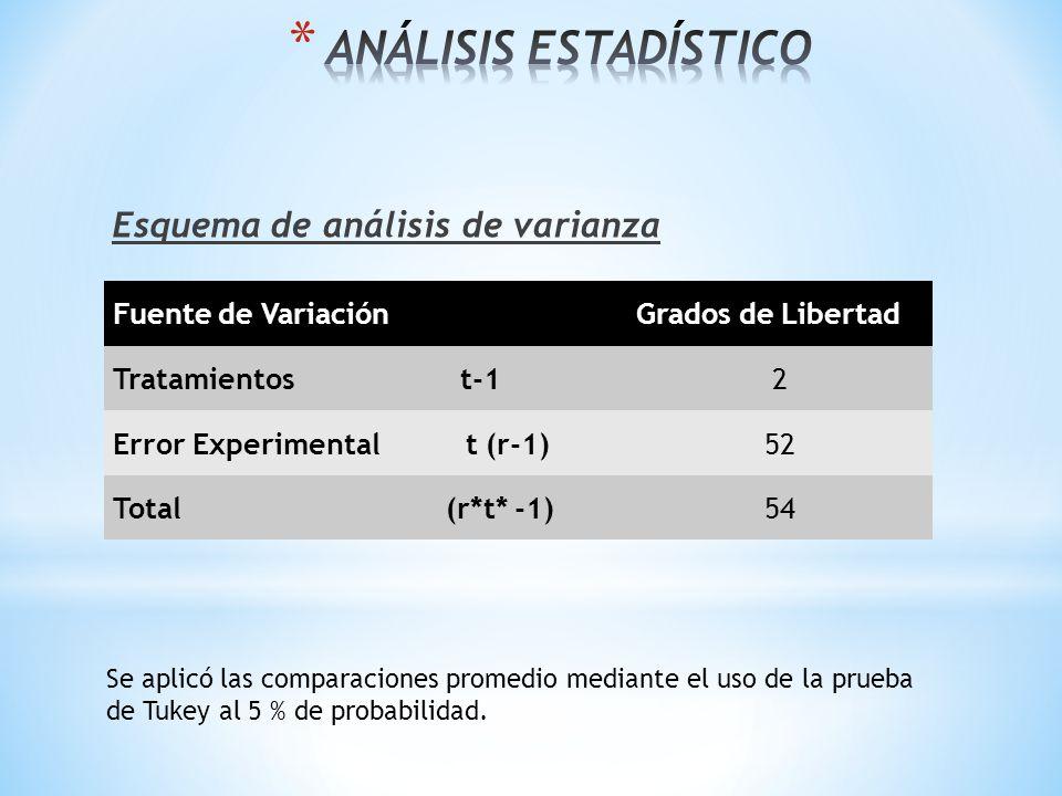 Esquema de análisis de varianza Fuente de VariaciónGrados de Libertad Tratamientos t-12 Error Experimental t (r-1)52 Total (r*t* -1)54 Se aplicó las c