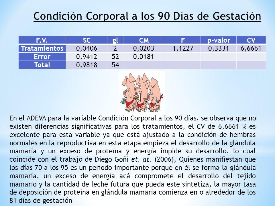 F.V.SCglCMFp-valorCV Tratamientos0,040620,02031,12270,33316,6661 Error0,9412520,0181 Total0,981854 En el ADEVA para la variable Condición Corporal a l