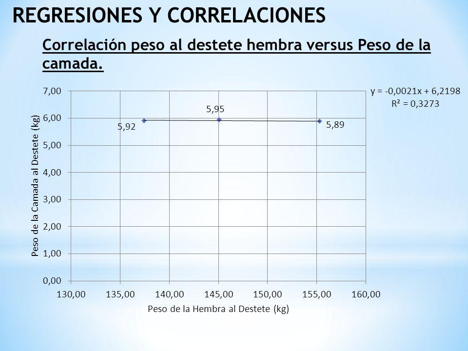 REGRESIONES Y CORRELACIONES Correlación peso al destete hembra versus Peso de la camada.