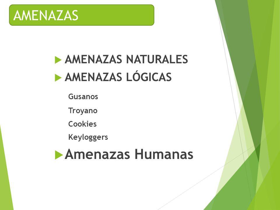 AMENAZAS NATURALES AMENAZAS LÓGICAS Gusanos Troyano Cookies Keyloggers Amenazas Humanas AMENAZAS