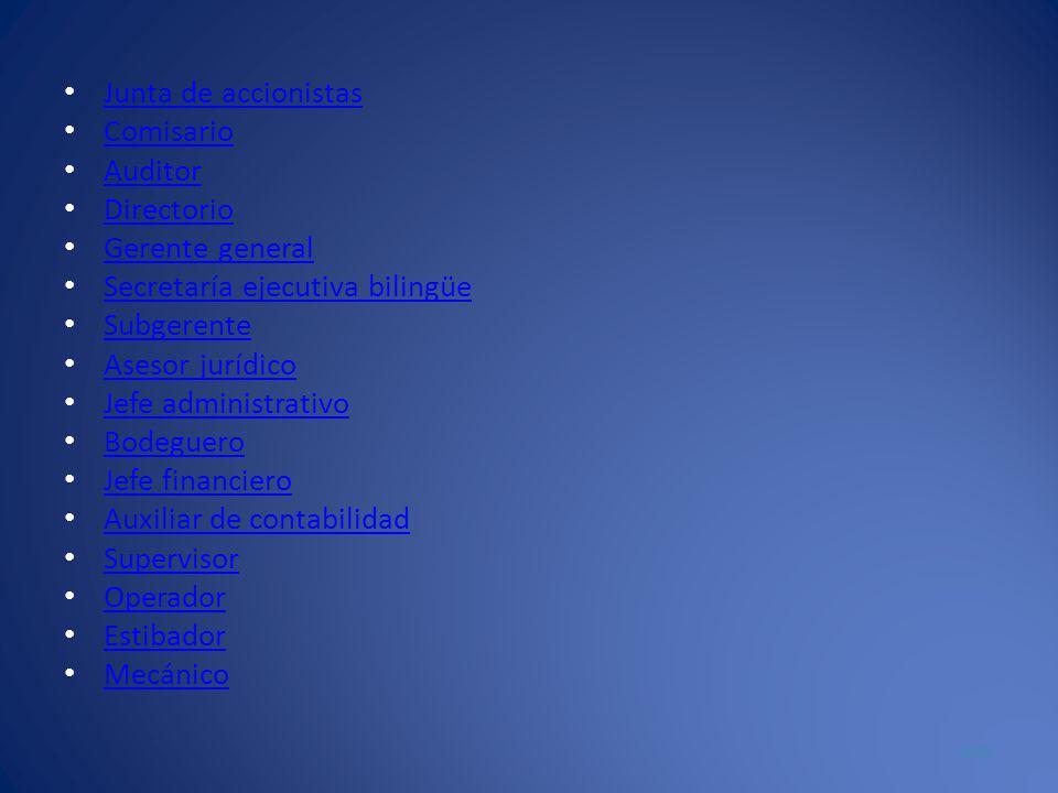 Junta de accionistas Comisario Auditor Directorio Gerente general Secretaría ejecutiva bilingüe Subgerente Asesor jurídico Jefe administrativo Bodeguero Jefe financiero Auxiliar de contabilidad Supervisor Operador Estibador Mecánico