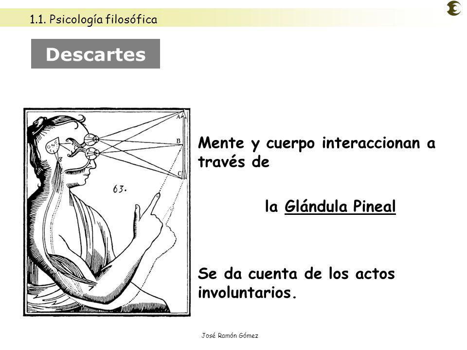 José Ramón Gómez Mente y cuerpo interaccionan a través de la Glándula Pineal Se da cuenta de los actos involuntarios. Descartes 1.1. Psicología filosó