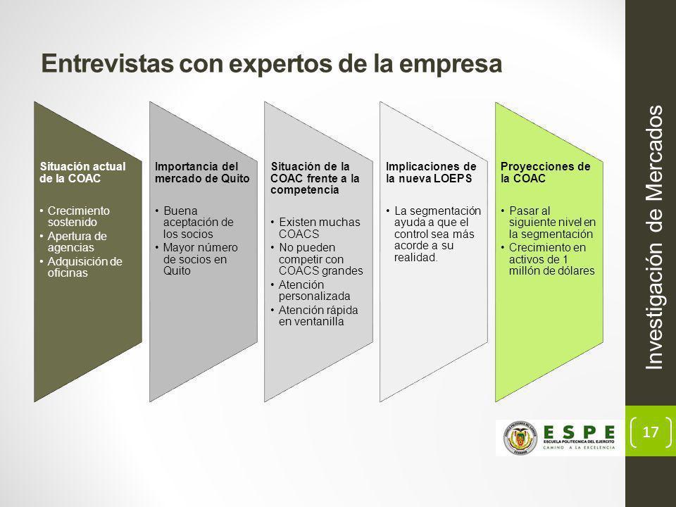 17 Entrevistas con expertos de la empresa Investigación de Mercados