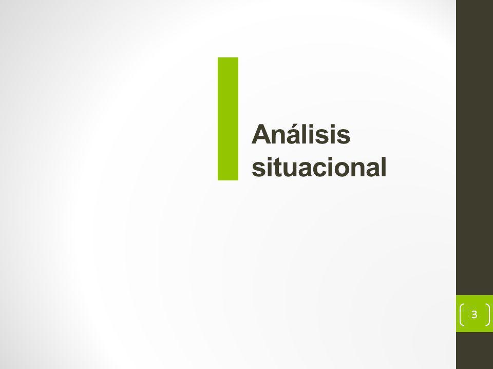 3 Análisis situacional