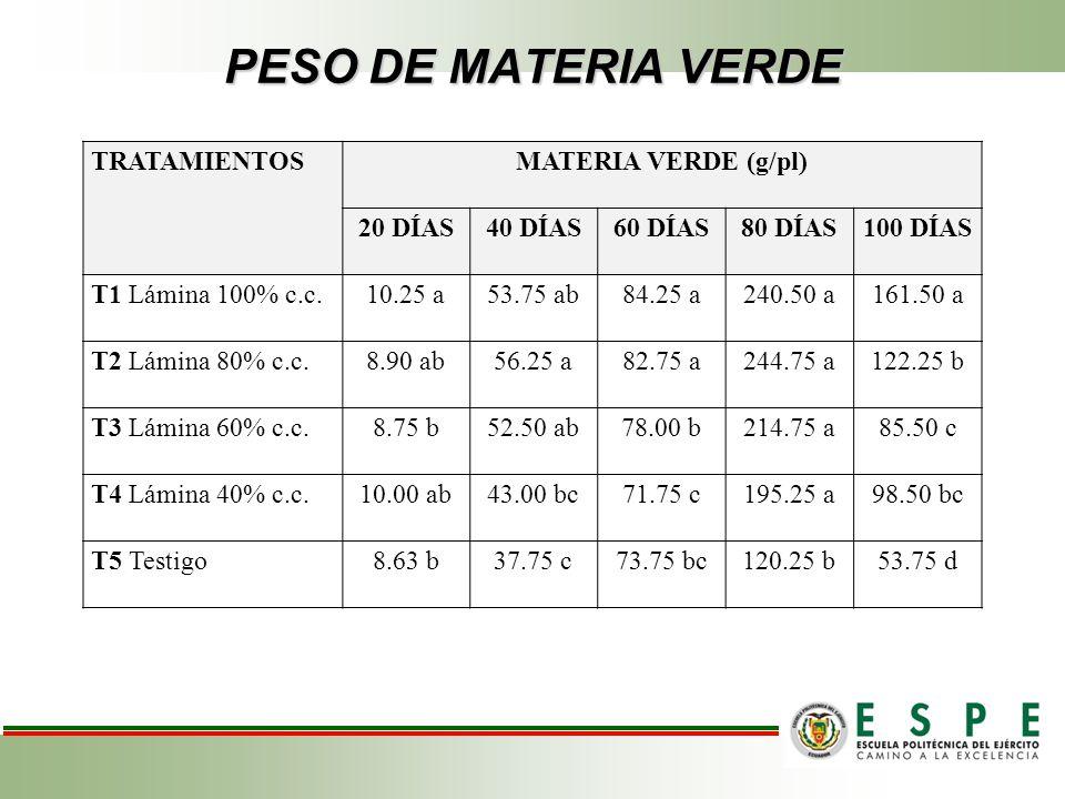 PESO DE MATERIA VERDE TRATAMIENTOSMATERIA VERDE (g/pl) 20 DÍAS40 DÍAS60 DÍAS80 DÍAS100 DÍAS T1 Lámina 100% c.c. 10.25 a 53.75 ab 84.25 a240.50 a161.50