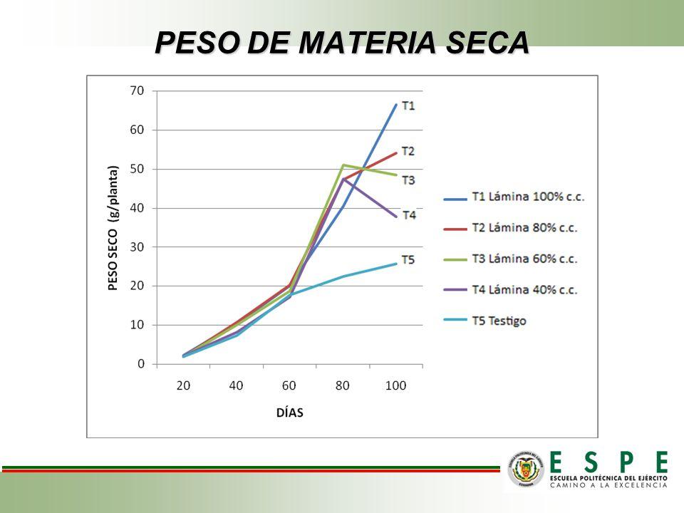 PESO DE MATERIA SECA