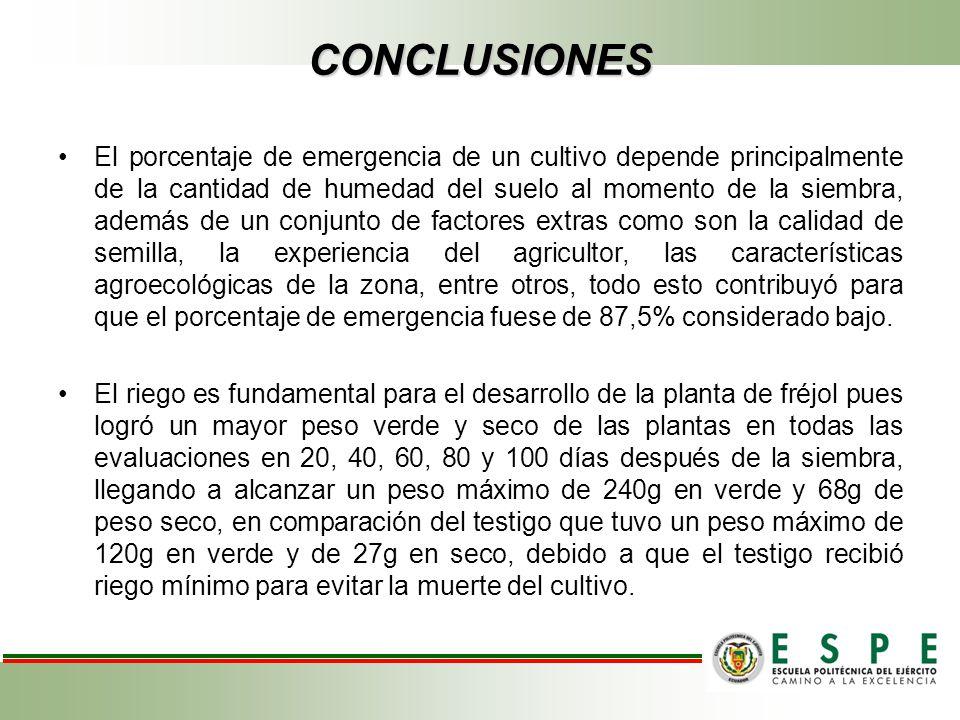 CONCLUSIONES El porcentaje de emergencia de un cultivo depende principalmente de la cantidad de humedad del suelo al momento de la siembra, además de