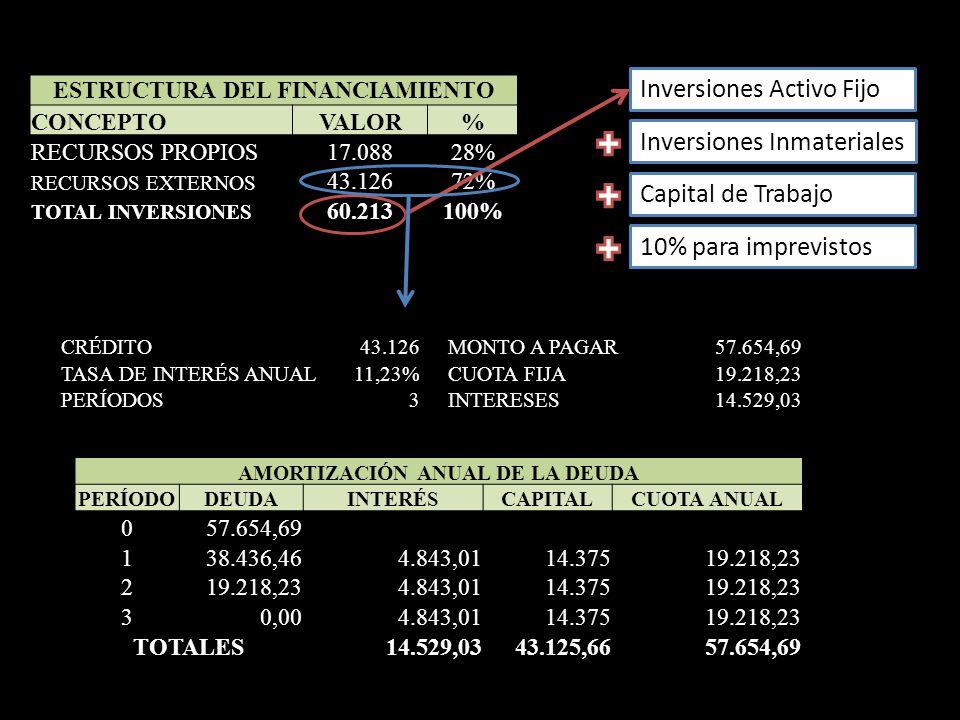 ESTRUCTURA DEL FINANCIAMIENTO CONCEPTOVALOR% RECURSOS PROPIOS17.08828% RECURSOS EXTERNOS 43.12672% TOTAL INVERSIONES 60.213100% Inversiones Activo Fij