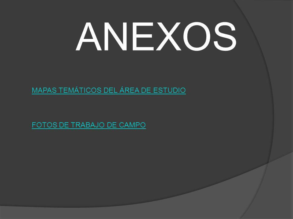 MAPAS TEMÁTICOS DEL ÁREA DE ESTUDIO FOTOS DE TRABAJO DE CAMPO ANEXOS