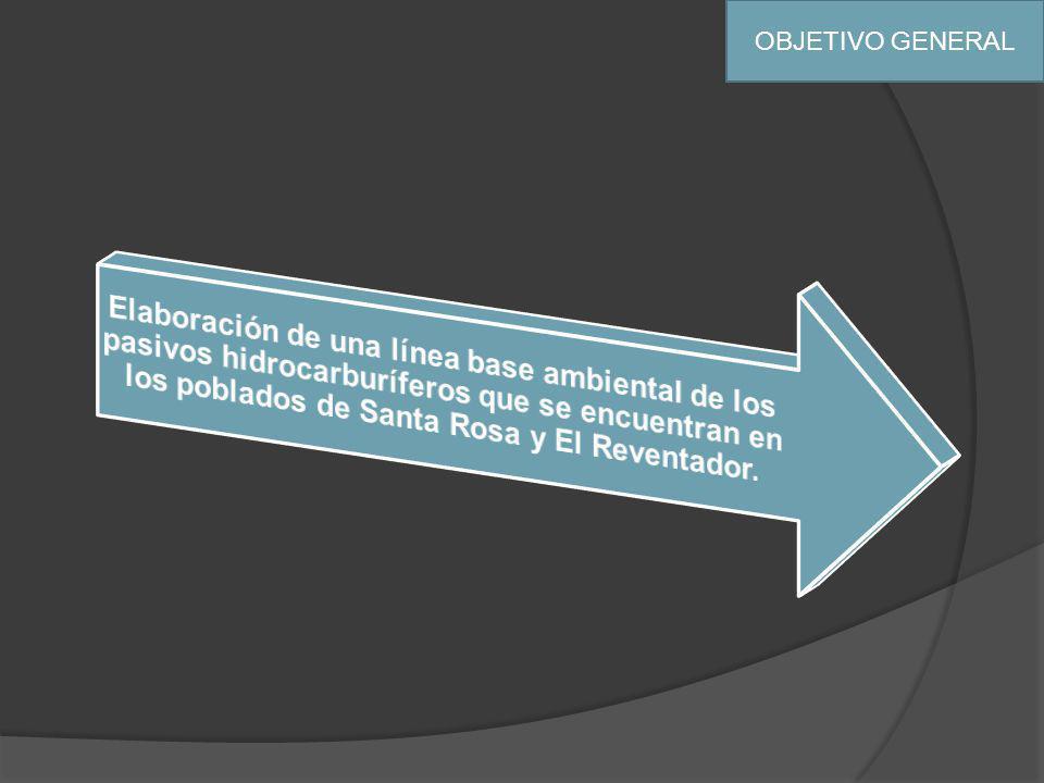 OBJETIVOS ESPECIFICOS Realizar una caracterización de los de los pasivos ambientales que se encuentran dentro del área de influencia del PROYECTO HIDROELÉCTRICO COCA CODO SINCLAIR.