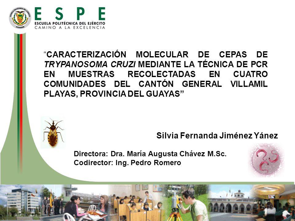 CARACTERIZACIÓN MOLECULAR DE CEPAS DE TRYPANOSOMA CRUZI MEDIANTE LA TÉCNICA DE PCR EN MUESTRAS RECOLECTADAS EN CUATRO COMUNIDADES DEL CANTÓN GENERAL V