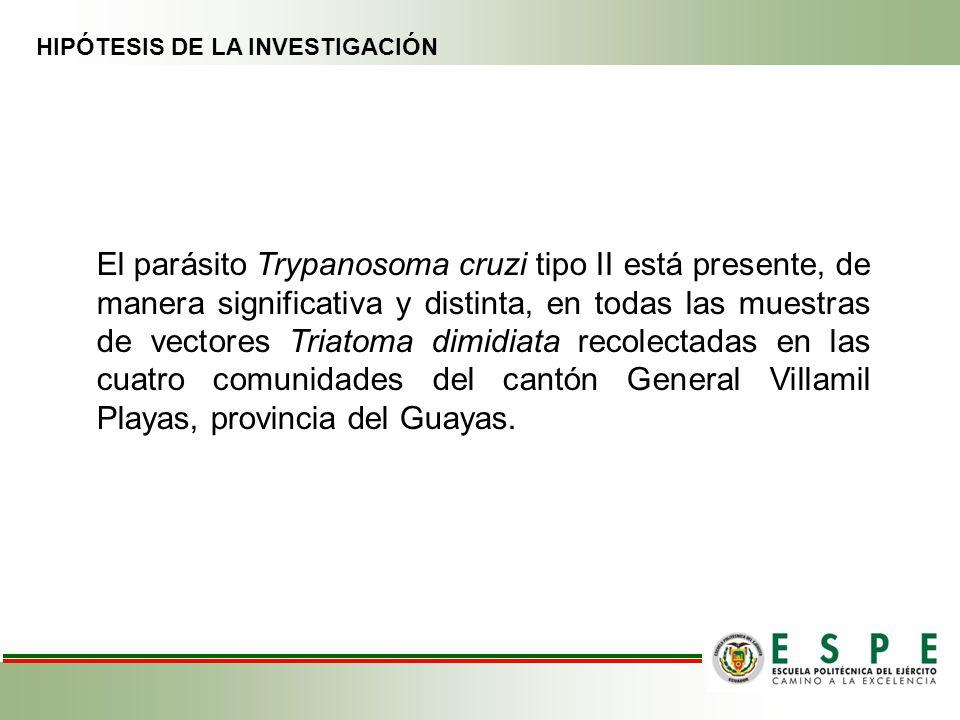 HIPÓTESIS DE LA INVESTIGACIÓN El parásito Trypanosoma cruzi tipo II está presente, de manera significativa y distinta, en todas las muestras de vector